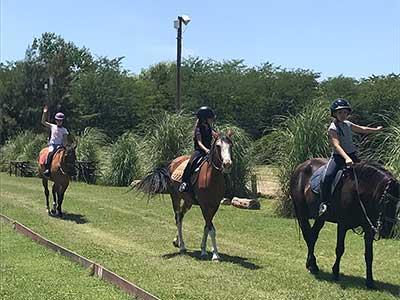 Equestria Salto y Polo crece y se renueva